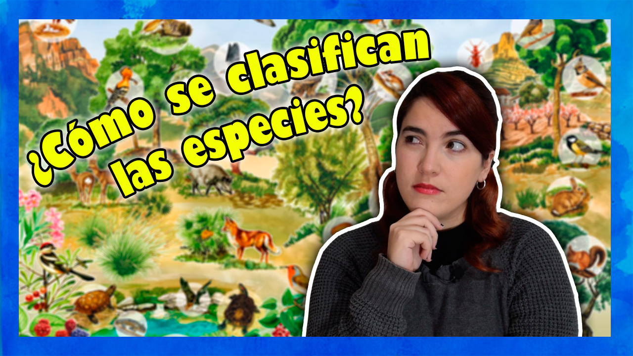 ¿Quieres saber cómo se clasifican las especies? Pincha aquí