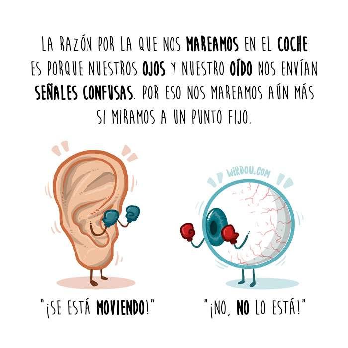 ciencia, divertida, curiosidad, ilustración, dibujo, ojos, oído, señales. cerebro, mareo, coche