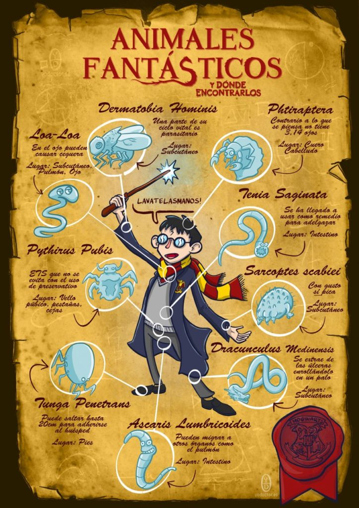 Animales fantásticos y como encontrarlos, Harry Potter y medicina Yo, Doctor