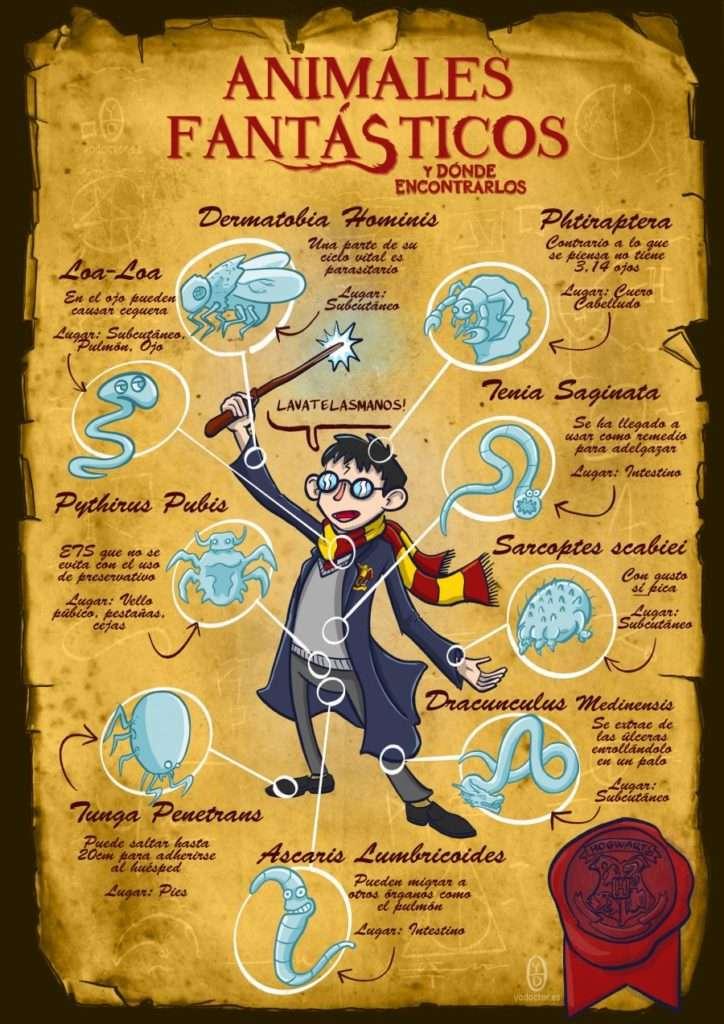 Animales fantásticos y como encontrarlos, Harry Potter y medicina Yo, Doctor