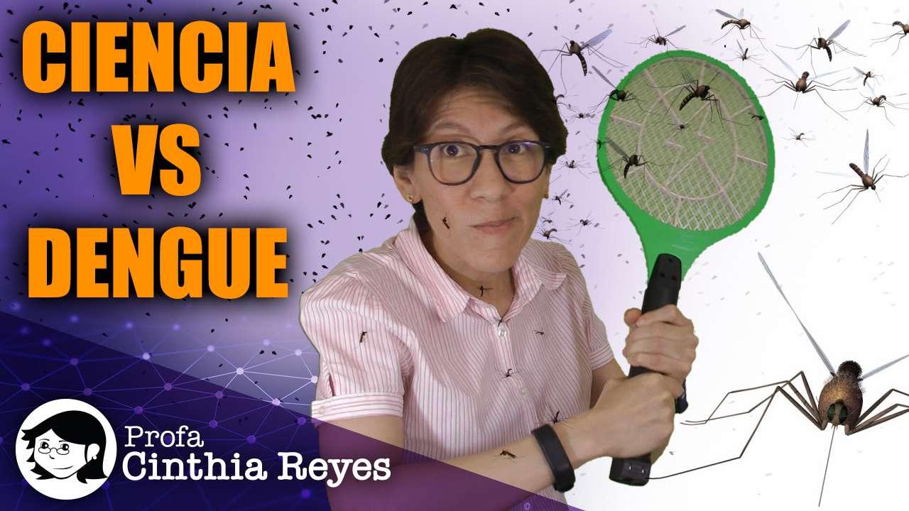 Combate al dengue