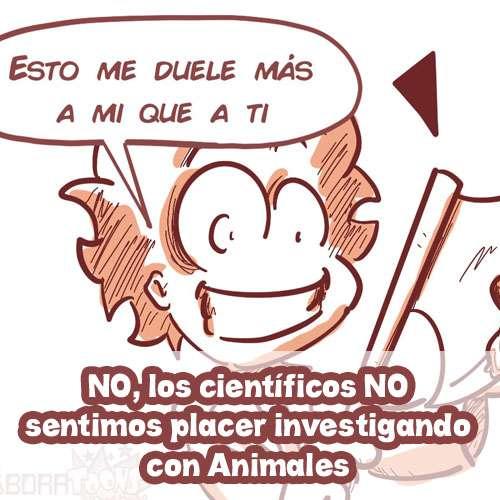 experimentación animal realidad