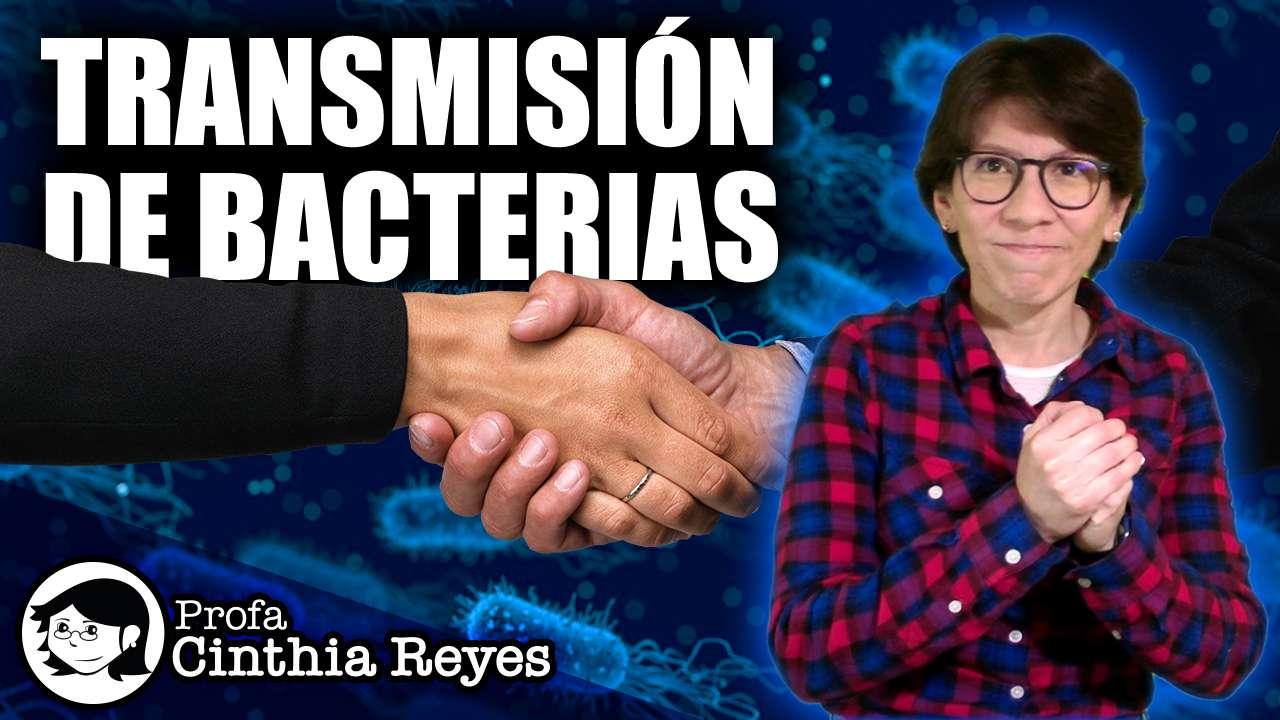 transmisión de bacterias en el saludo