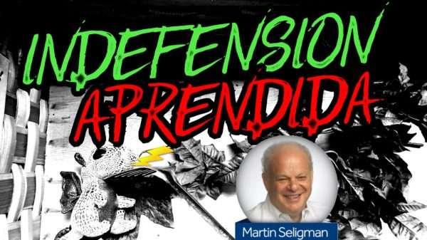 La Teoría de la indefensión aprendida de Seligman
