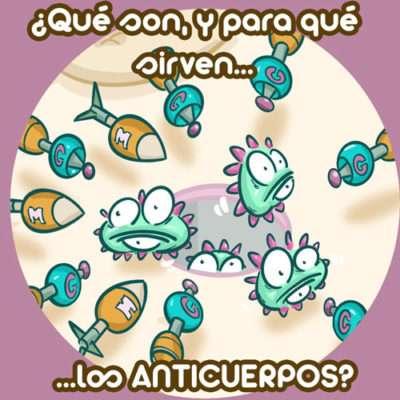 Anticuerpos y coronavirus