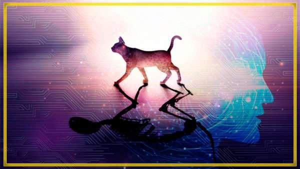Inteligencia Artificial resuelve la ECUACIÓN DE SCHRÖDINGER x Dot CSV 